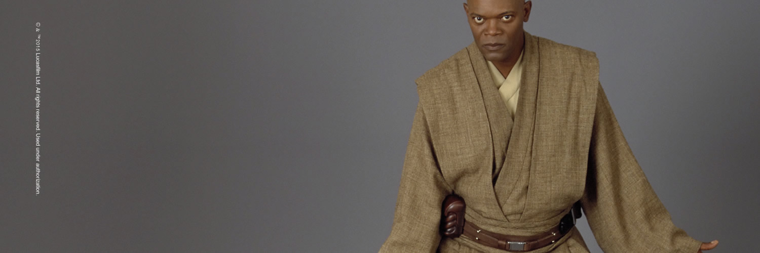 All Costumes from Rebel, Jedi, Princess, Queen: Star Wars™ and the ...